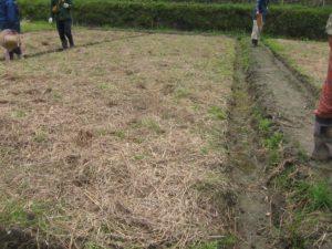 自然農法 糸島